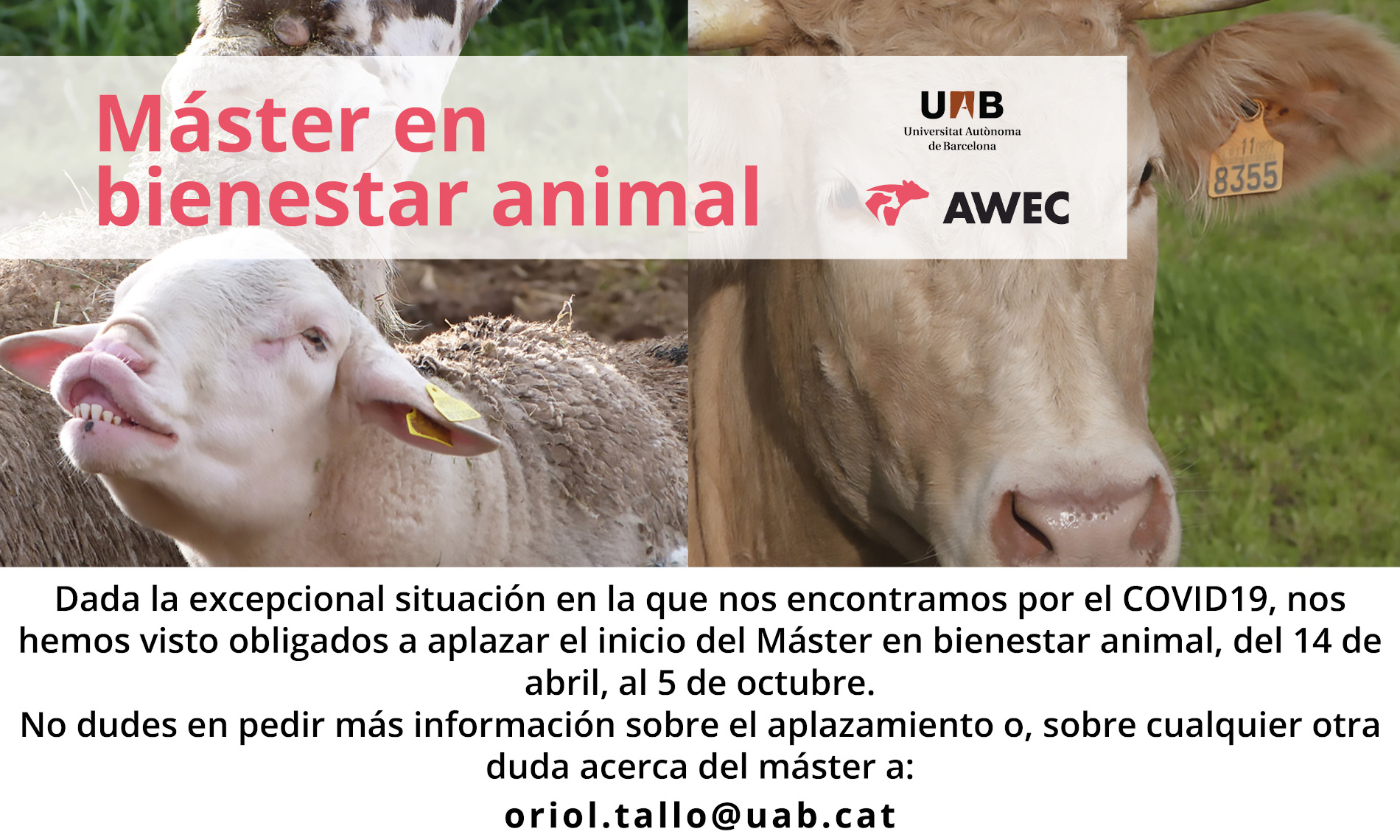 MÁSTER EN BIENESTAR ANIMAL